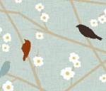Birds - hg_2812_5