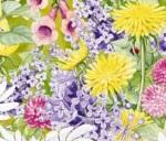 Beautiful spring flowers - wp_71619_753